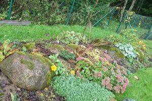 Dagi aed tagaaia peenar