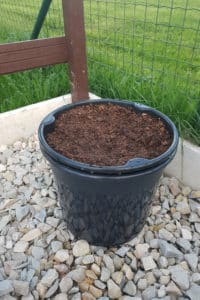 Dagi aed kartulipott